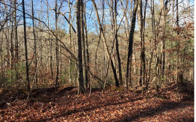 0 Odessa Court, Ellijay, GA 30540 (MLS #284171) :: RE/MAX Town & Country