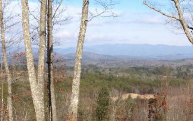 LT 18 Hawksclaw Trail, Blairsville, GA 30512 (MLS #284240) :: RE/MAX Town & Country