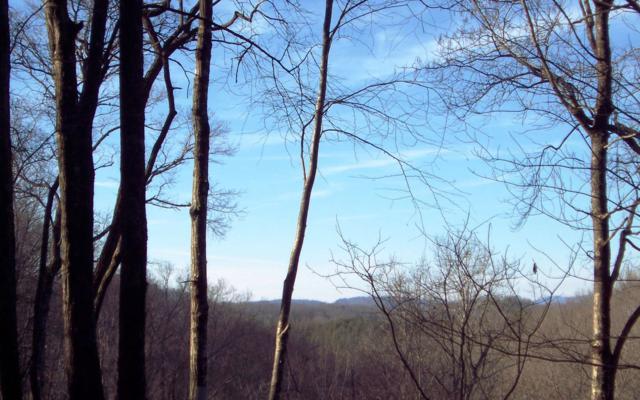 Brasstown, NC 28906 :: Path & Post Real Estate