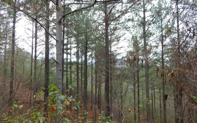 34 Aerie Vista, Murphy, NC 28906 (MLS #284289) :: RE/MAX Town & Country