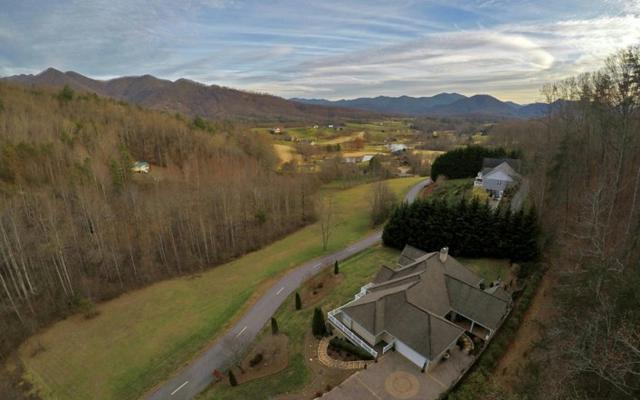317 Ash Branch Circle, Hayesville, NC 28904 (MLS #284299) :: RE/MAX Town & Country
