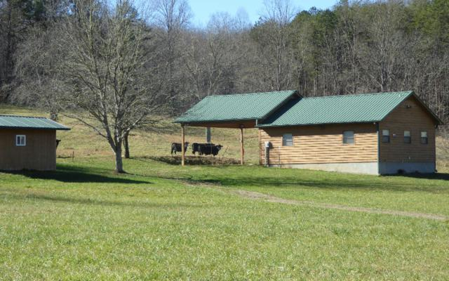 992 Bethabara Road, Hayesville, NC 28904 (MLS #284375) :: RE/MAX Town & Country