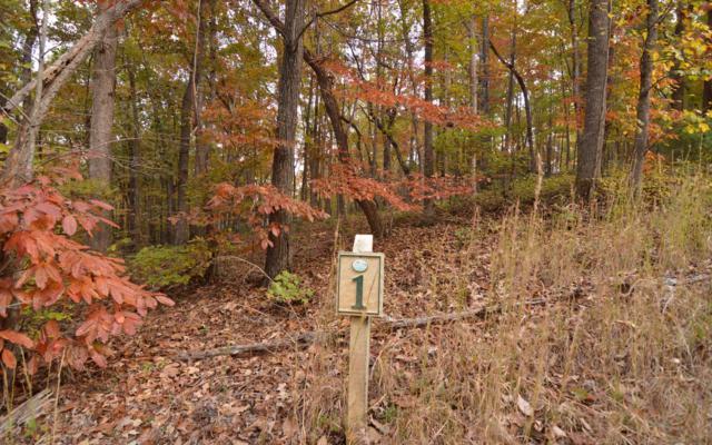 LT 1 Serenity Ridge, Blairsville, GA 30512 (MLS #284423) :: RE/MAX Town & Country
