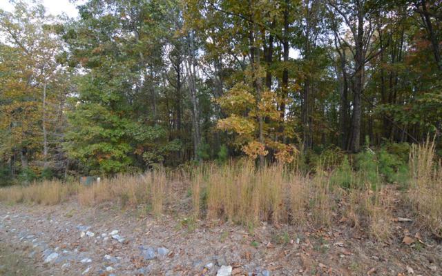 LT 3 Serenity Ridge, Blairsville, GA 30512 (MLS #284425) :: RE/MAX Town & Country