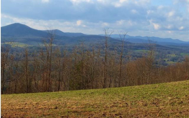 LT 27 Summit Trace, Blairsville, GA 30512 (MLS #284484) :: RE/MAX Town & Country