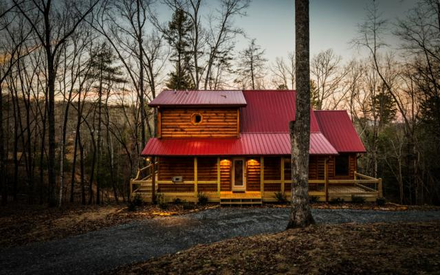 227 Black Ankle Drive, Cherry Log, GA 30522 (MLS #284562) :: RE/MAX Town & Country
