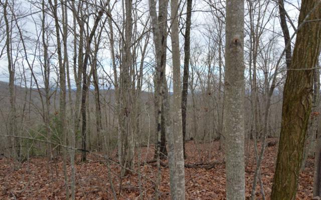 LT 38 Laurel Brooke, Blairsville, GA 30512 (MLS #284656) :: Path & Post Real Estate