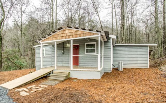 53 Cherokee Springs Trl, Cherry Log, GA 30522 (MLS #284667) :: RE/MAX Town & Country