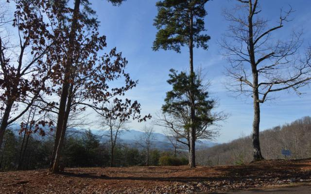 #12 Harbour Heights, Hayesville, NC 28904 (MLS #284670) :: RE/MAX Town & Country