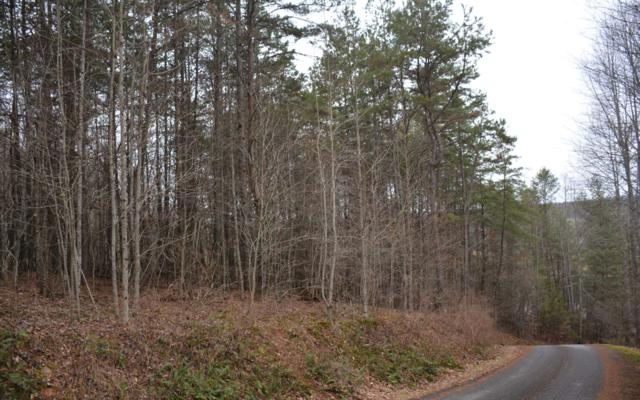 LOT 1 Hemptown Overlook, Morganton, GA 30560 (MLS #284672) :: RE/MAX Town & Country