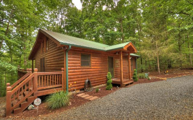 207 Sunrise Lane, Blue Ridge, GA 30513 (MLS #284676) :: RE/MAX Town & Country