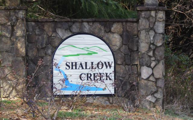 LT 46 Shallow Creek, Hiawassee, GA 30546 (MLS #284763) :: RE/MAX Town & Country