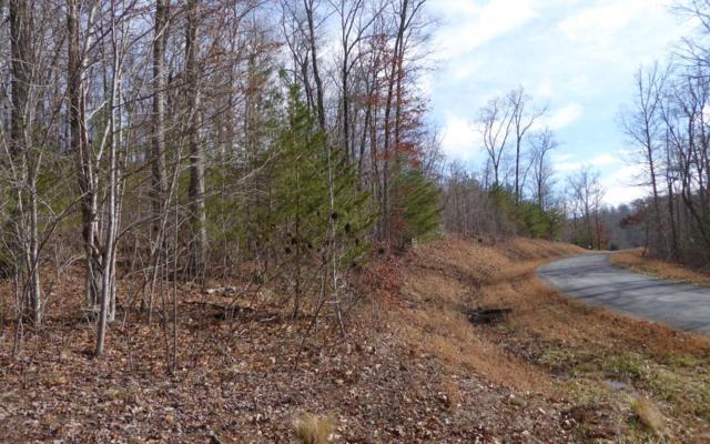 LT 31 Shallow Creek, Hiawassee, GA 30546 (MLS #284769) :: RE/MAX Town & Country