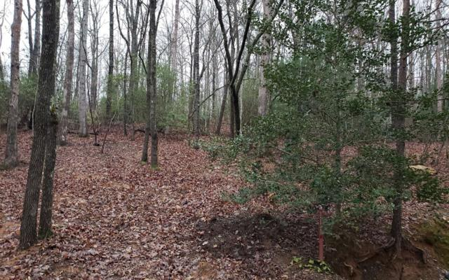 LT26 Cross Creek Road, Mineral Bluff, GA 30559 (MLS #284789) :: RE/MAX Town & Country