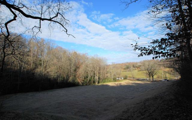 2602 Hwy 64 West, Hayesville, NC 28904 (MLS #284798) :: RE/MAX Town & Country