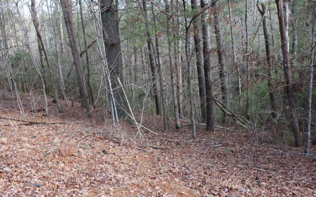 Ellijay, GA 30540 :: Path & Post Real Estate