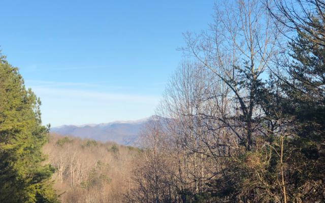 LT 40 The Summit, Blairsville, GA 30512 (MLS #284838) :: RE/MAX Town & Country