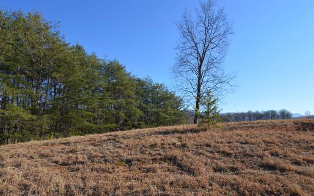 LT 79 The Preserve, Young Harris, GA 30582 (MLS #284869) :: RE/MAX Town & Country