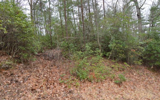 LT 14 Cook Mountain, Blairsville, GA 30512 (MLS #284918) :: Path & Post Real Estate