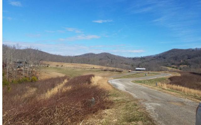 High Meadows Drive, Blue Ridge, GA 30513 (MLS #285136) :: RE/MAX Town & Country