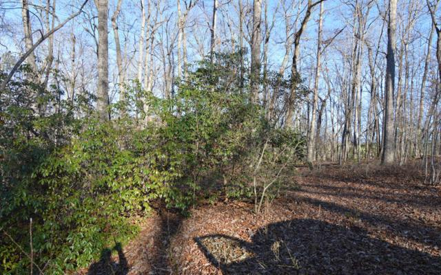 LT 14 Mustang Trail, Blairsville, GA 30512 (MLS #285202) :: Path & Post Real Estate