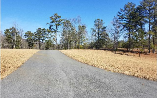 L 131 Fox Lake East- 131, Blairsville, GA 30512 (MLS #285235) :: RE/MAX Town & Country
