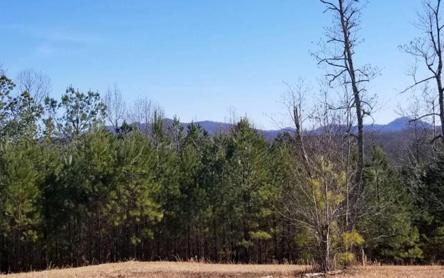 L 140 Fox Lake East- 140, Blairsville, GA 30512 (MLS #285242) :: Path & Post Real Estate