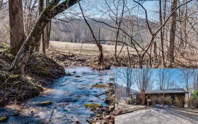 2917 Gribble Edwards Road, Hayesville, NC 28904 (MLS #285300) :: RE/MAX Town & Country
