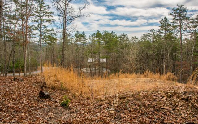 The Woods Rd, Mineral Bluff, GA 30559 (MLS #285331) :: RE/MAX Town & Country