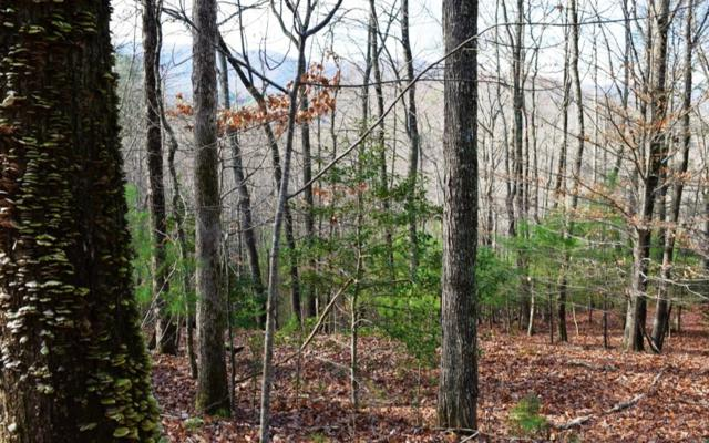 G-54 Mountain Oak Rd, Ellijay, GA 30536 (MLS #285386) :: RE/MAX Town & Country
