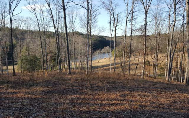 LOT 8 Faith Hill Road, McCaysville, GA 30555 (MLS #285450) :: RE/MAX Town & Country