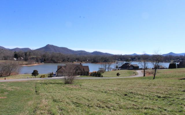 LT 29 Mcintosh Cove, Hayesville, NC 28904 (MLS #285485) :: RE/MAX Town & Country