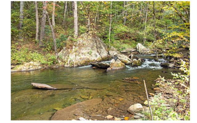LT16A Fires Creek Cove, Hayesville, NC 28904 (MLS #285501) :: RE/MAX Town & Country