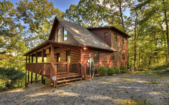 388 Granny Hughes Road, Mineral Bluff, GA 30559 (MLS #285503) :: RE/MAX Town & Country