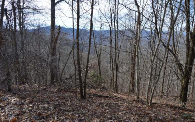 Burnt Leaf-20+ Acres, Hayesville, NC 28904 (MLS #285536) :: RE/MAX Town & Country