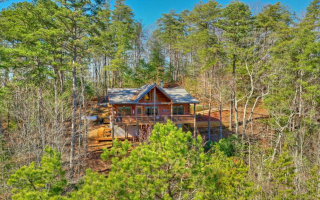 146 Rosiey Lane, Blue Ridge, GA 30513 (MLS #285543) :: RE/MAX Town & Country