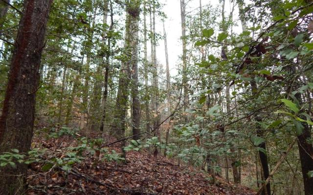 1&2 Village Road, Murphy, NC 28906 (MLS #285553) :: Path & Post Real Estate