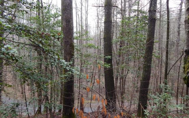 5&6 Village Road, Murphy, NC 28906 (MLS #285555) :: RE/MAX Town & Country