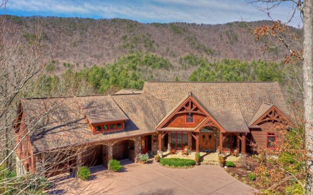 199 Wilderness Way, Ellijay, GA 30536 (MLS #285565) :: RE/MAX Town & Country