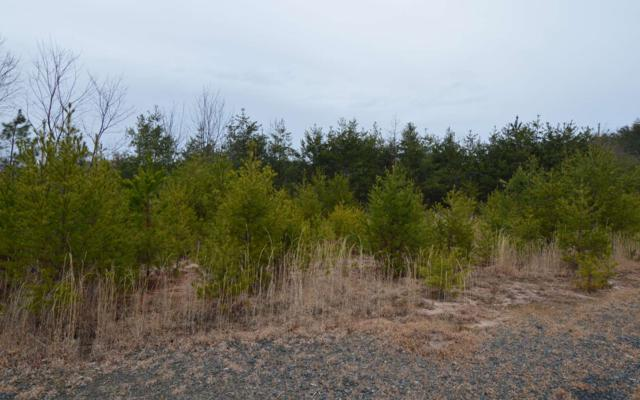 LOT 2 Preserve @ Beach Mtn, Hayesville, NC 28904 (MLS #285606) :: RE/MAX Town & Country