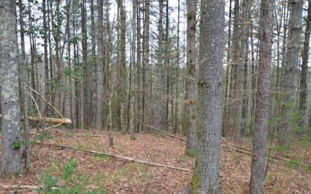 LOT 5 Shady Oaks-Mouse Crk, Murphy, NC 28906 (MLS #285607) :: Path & Post Real Estate