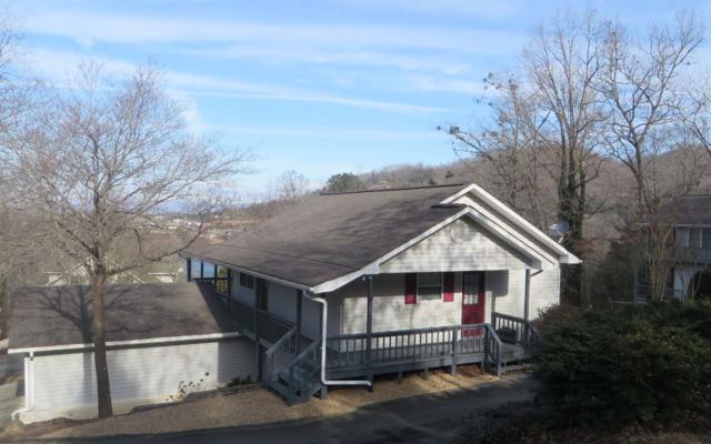 987 Vista Lane, Hiawassee, GA 30546 (MLS #285628) :: RE/MAX Town & Country