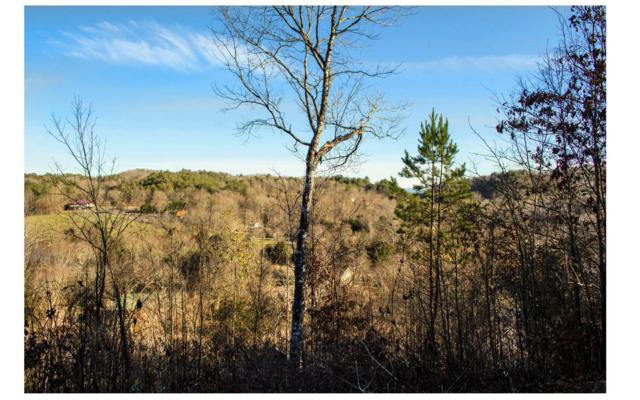 16A Tree Top Terrace, Murphy, NC 28906 (MLS #285630) :: RE/MAX Town & Country