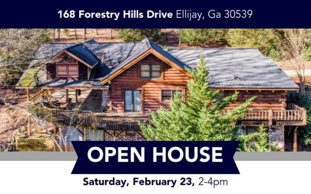 168 Forestry Hills Dr, Ellijay, GA 30540 (MLS #285666) :: RE/MAX Town & Country