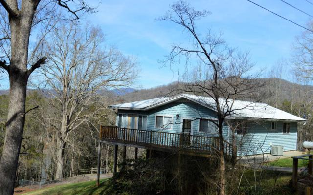 1057 Sky Hawk Mountain Rd, Hiawassee, GA 30546 (MLS #285787) :: RE/MAX Town & Country