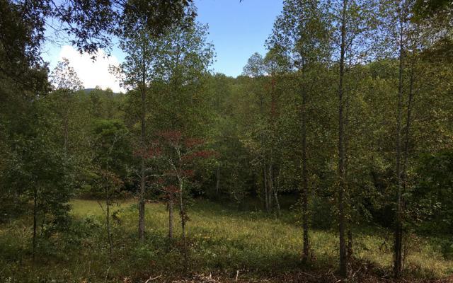 LOT 4 Hood Acres, Blairsville, GA 30512 (MLS #285843) :: RE/MAX Town & Country