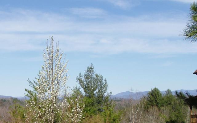 LOT 4 Trillium Heights Tr, Brasstown, NC 28902 (MLS #286029) :: RE/MAX Town & Country