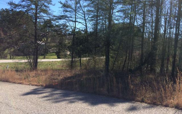 LOT 1 Autumn Hills, Blairsville, GA 30512 (MLS #286075) :: RE/MAX Town & Country