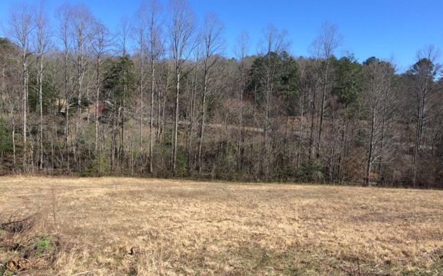 LT 17 Autumn Hills, Blairsville, GA 30512 (MLS #286105) :: RE/MAX Town & Country
