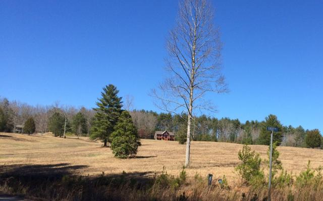 LOT24 Autumn Hills, Blairsville, GA 30512 (MLS #286121) :: RE/MAX Town & Country
